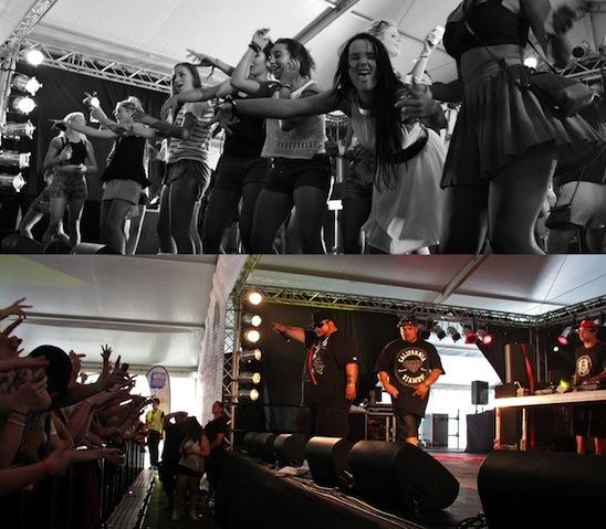 Homegrown Festival 2013